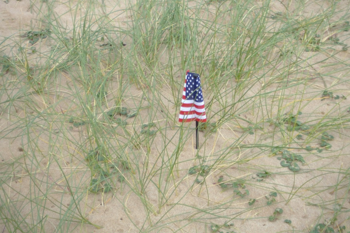 Flag on Normandy Beach Jim Bush May 28, 2006